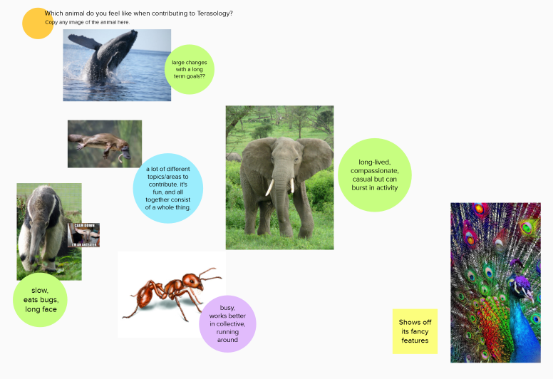 Which animal do I feel like when contributing to Terasology?