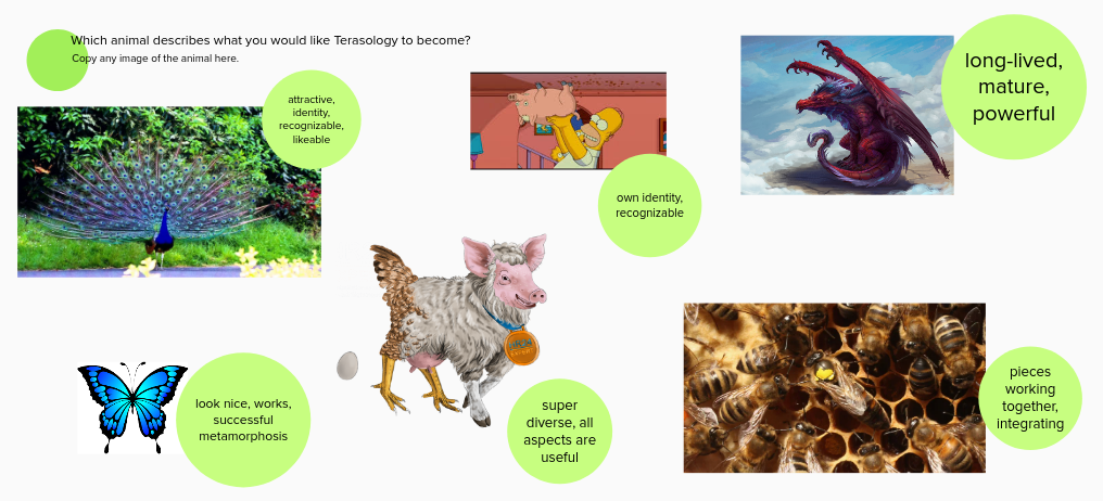 What animal should Terasology become?